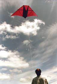Just enough wind to lift the kite and no more!